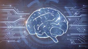 Quiero preservar mi cerebro para que mi mente sea descargada a una computadora